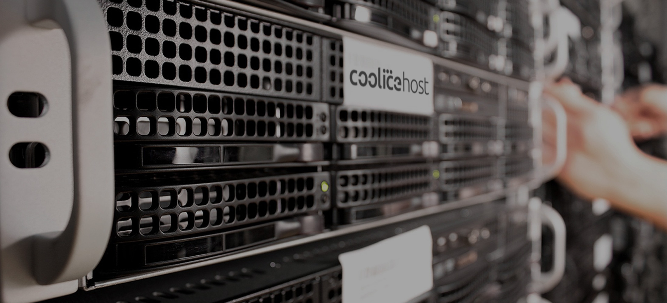 coolicehost.com